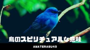 鳥のスピリチュアルな意味とは?鳥が横切ったときのスピリチュアルメッセージについて