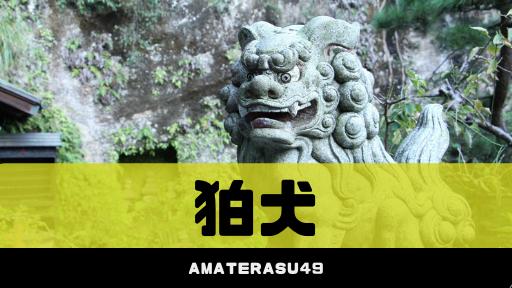 「狛犬」とは?阿吽の意味や他の動物が使われている神社について紹介!