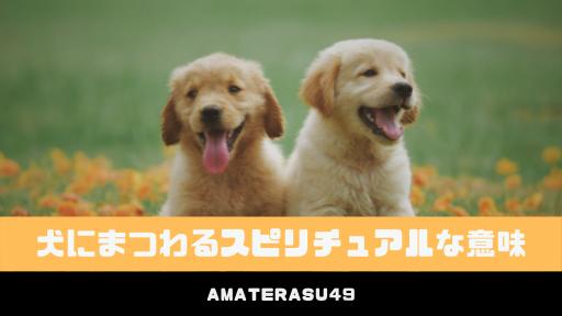 犬にまつわるスピリチュアルな意味10選|犬に好かれる人には霊感がない?
