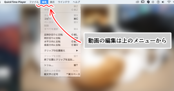 Mac・QuickTime Player(編集選択)画面