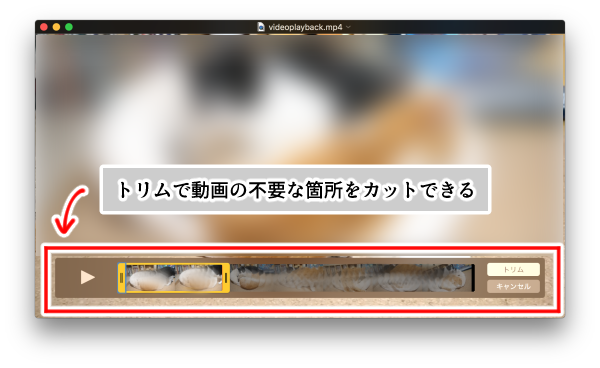 Mac・QuickTime Player(トリム編集)画面