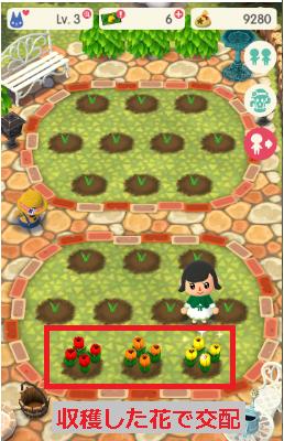 花 交配 方法