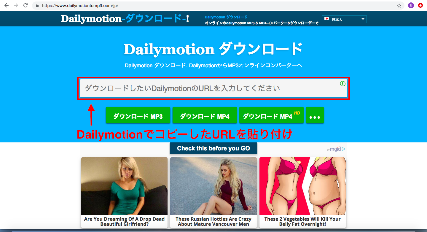 dailymotiontomp3画像1