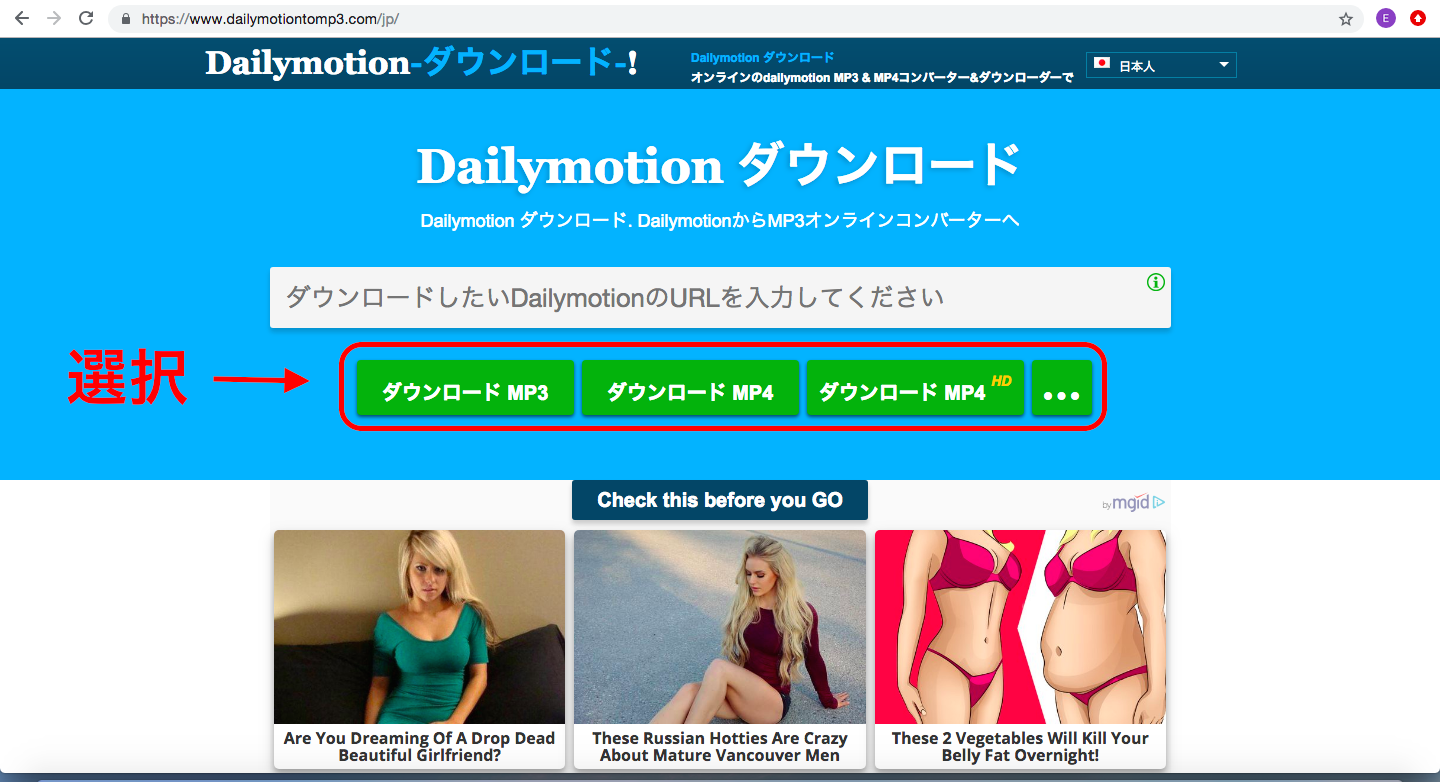 dailymotiontomp3画像2