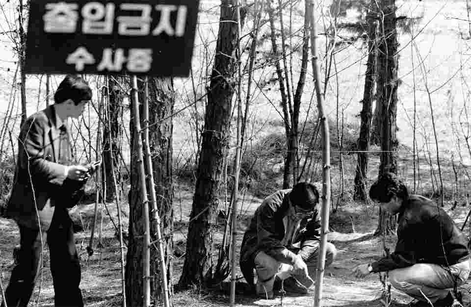 Asesino en serie de Corea