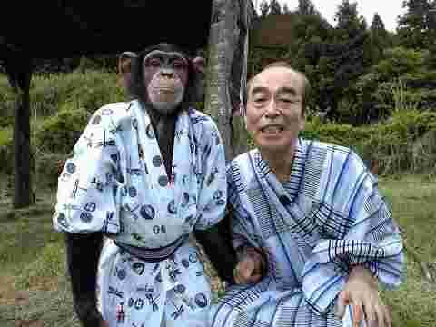 パン 君 動物園 死亡 志村 日テレ「志村どうぶつ園」チンパンジー パンくん女性襲う―