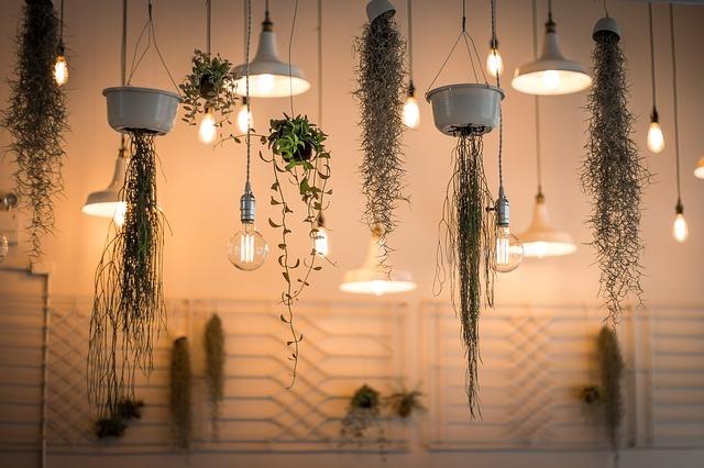 観葉植物のレイアウト例14選!部屋で真似したくなるおしゃれな置き方とは?