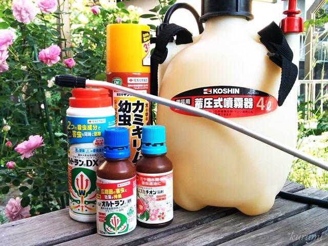 バラや観葉植物に使える殺虫剤まとめ!害虫駆除におすすめなものは?