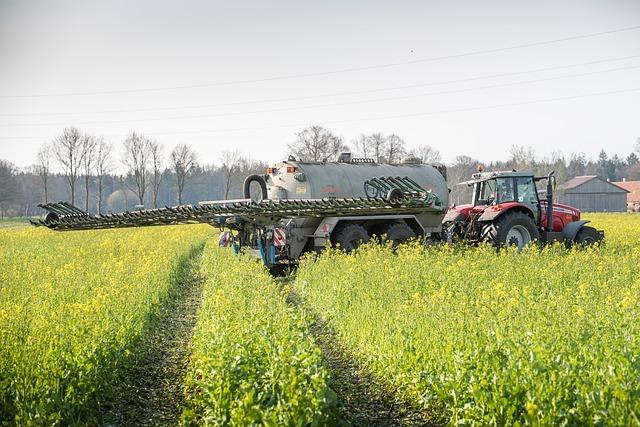 ケイカルとはどんな肥料?その成分や土壌改良剤としての効果をご紹介!