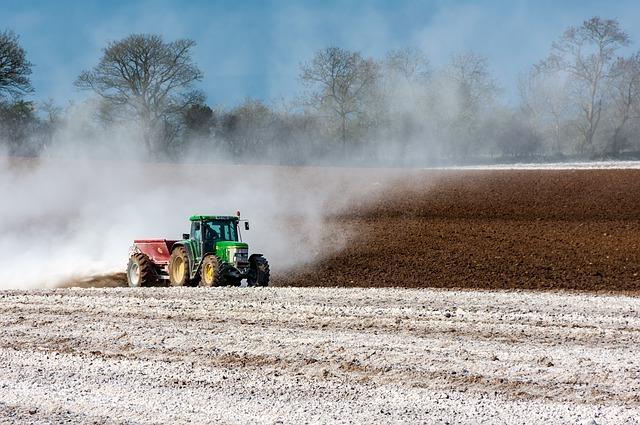 石灰肥料の種類一覧!苦土石灰・消石灰・生石灰・有機石灰の違いは?