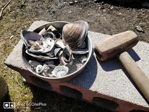有機石灰とは?肥料としての成分・効果・使い方をわかりやすく解説!