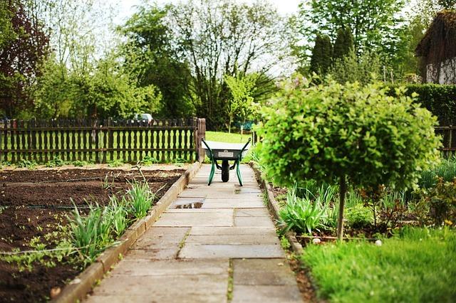6月に植えるべき野菜10選!種や苗から栽培できるおすすめ野菜はどれ?