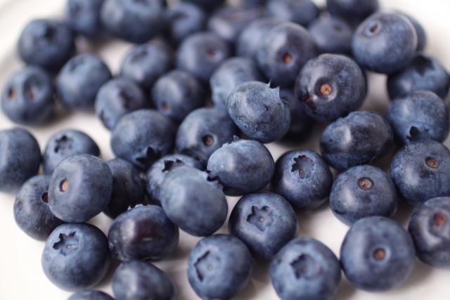 ブルーベリー栽培における施肥方法をご紹介!追肥の適切なタイミングは?