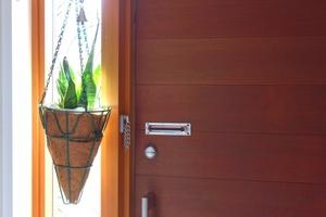サンスベリアのレア物43種!普段あまり見かけない珍しい種類をご紹介!