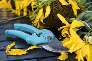 おすすめの剪定ばさみ8選!切れ味がよい人気の園芸用の鋏はどれ?