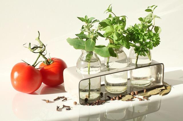 ハーブの水耕栽培!パクチーなど初心者でも簡単に栽培できるコツを解説!