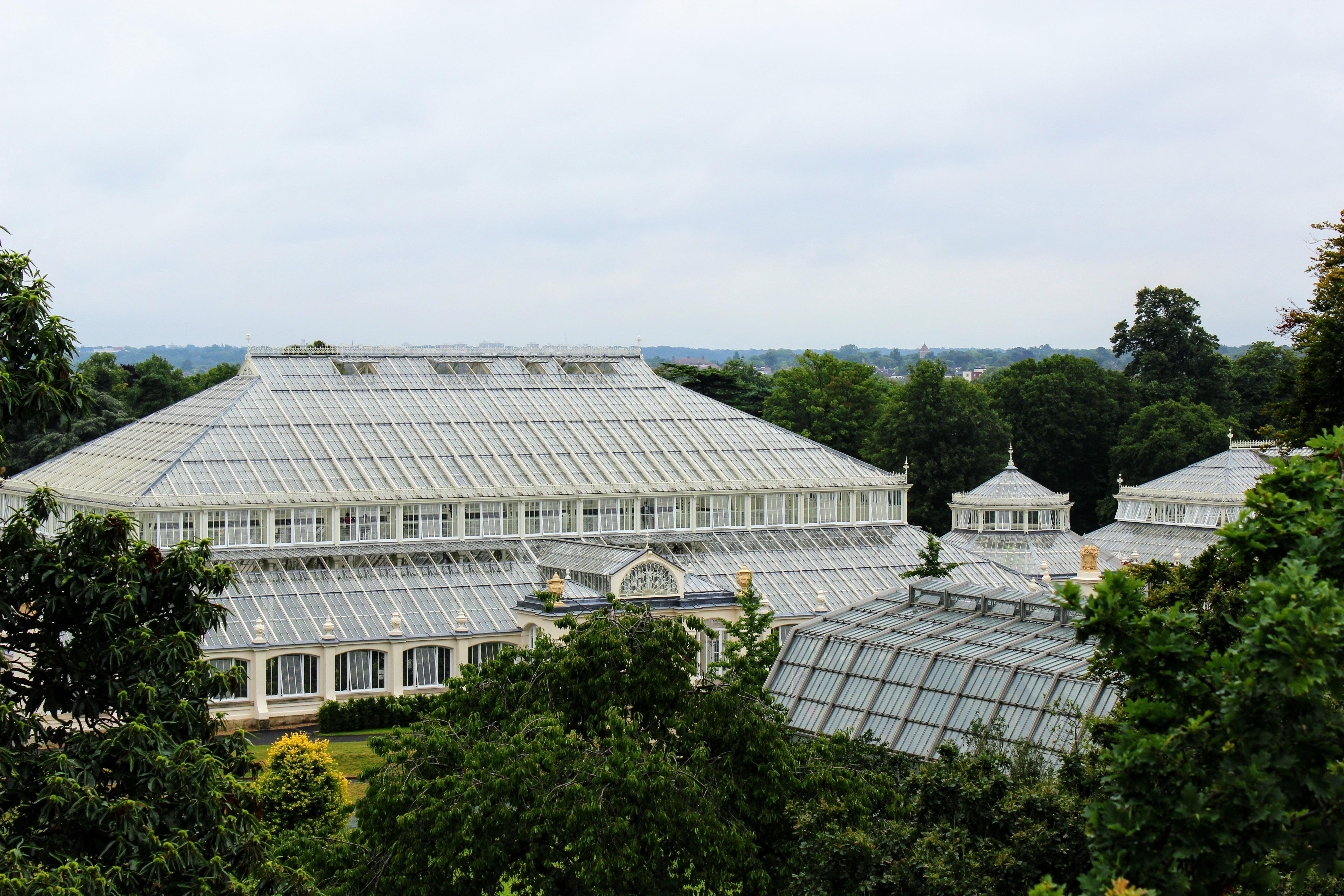 キューガーデンとは?ロンドンにある王立植物園の魅力をお届け!