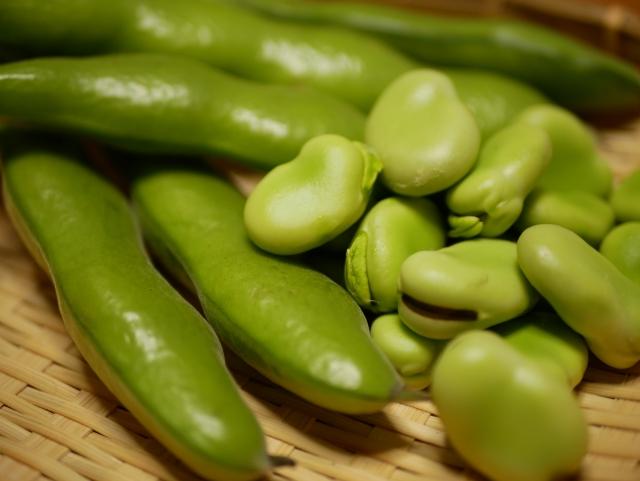 そら豆の上手な保存方法とは?茹で方から冷蔵・冷凍方法まで解説!