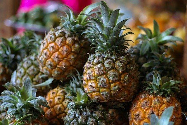 パイナップルの育て方!鉢での植え方から収穫までの栽培のコツを解説!