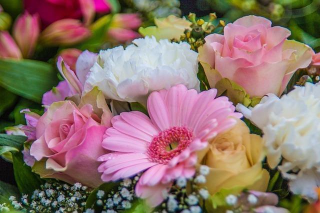 「感謝」の意味・花言葉をもつ植物10選!送別会などに相応しい花は?