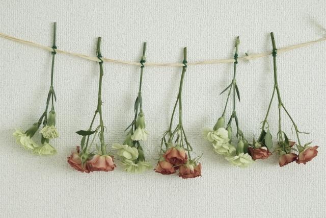 バラでドライフラワーを作る方法!簡単な作製手順から飾り方まで紹介!