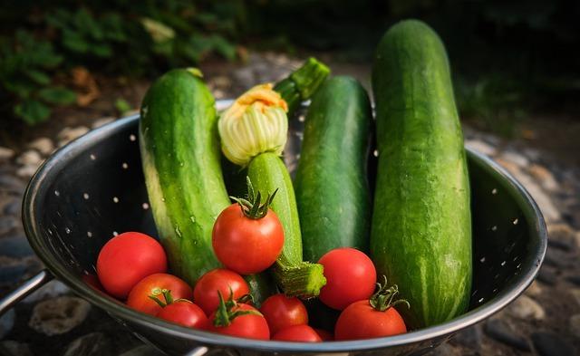 ズッキーニの収穫時期の見分け方と上手な収穫方法!収穫後の保存方法も紹介!