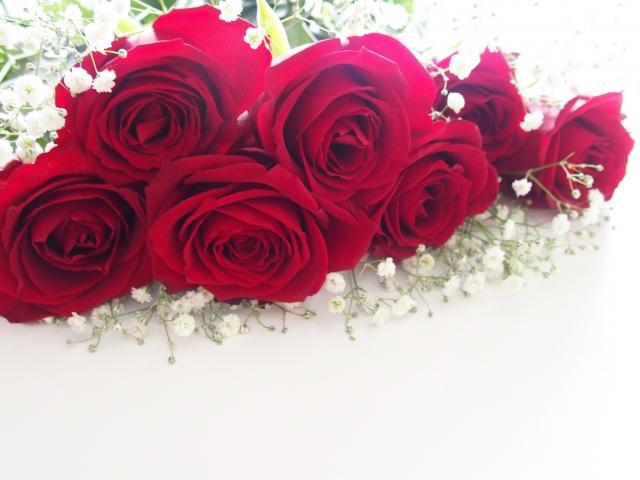 バラの本数別の意味・花言葉まとめ!5本のバラの花言葉は何?
