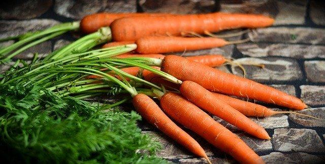 セリ科とは?セリ科の植物の特徴や代表的なセリ科の花・野菜を紹介!