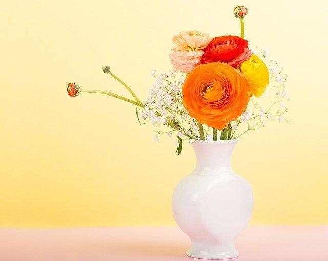 キンポウゲ科の花・植物11選!それぞれの特徴や花言葉をご紹介!