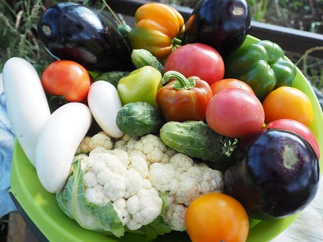 栽培しやすい夏野菜6選!植え付け時期・育て方・収穫方法を各種解説!