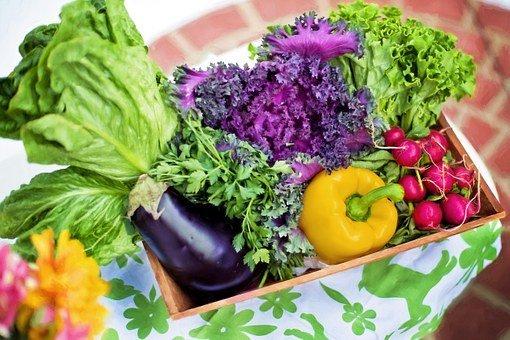 野菜は食べなくても大丈夫か?野菜を摂取するの意味や効果を解説!
