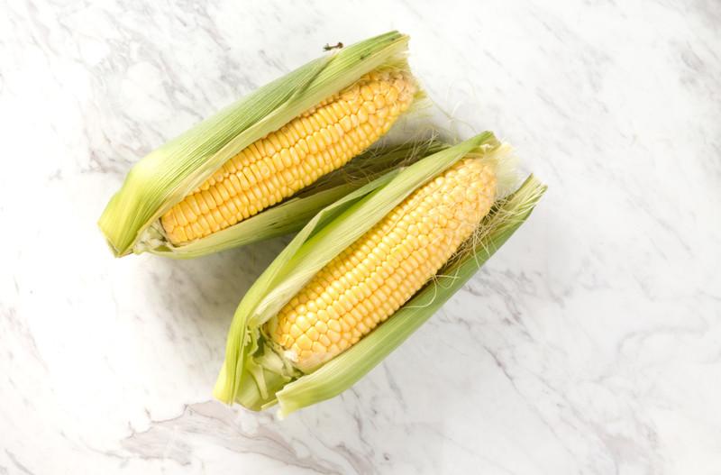 トウモロコシの育て方!種まき・芽出し・間引きから収穫までのコツは?