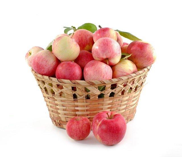 アルプス乙女ってどんなリンゴ?味・旬な時期や食べ方をご紹介!