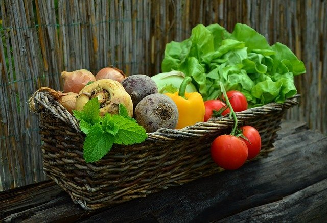 4月に種まきできる野菜6選!絶対育てるべき春植え野菜は?