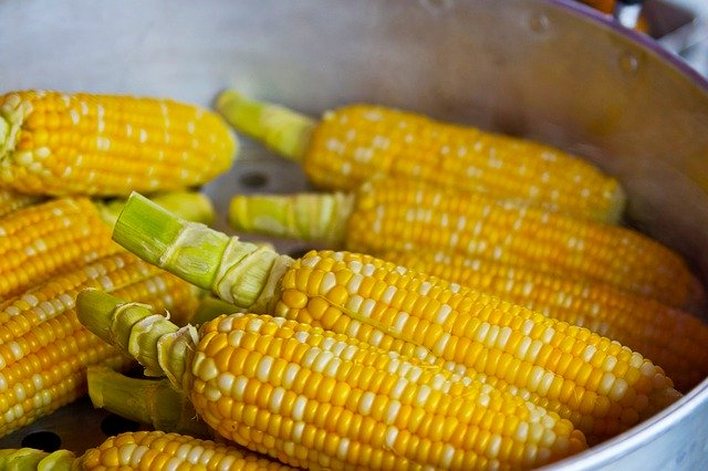 コーンの栄養ってどれくらい?成分・効果・効能やおいしい食べ方を紹介!