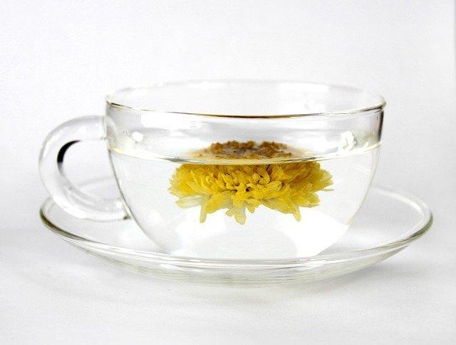 菊花茶(キクカチャ)とは?その味・効能から作り方や飲み方まで紹介!