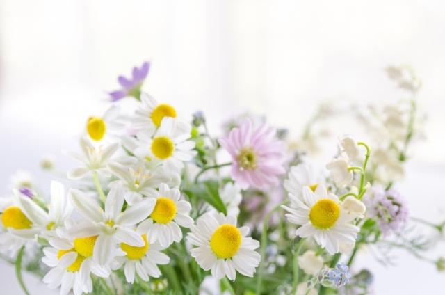 切り花を長持ちさせる5つのポイント!花瓶の水の交換頻度や適切な量は?