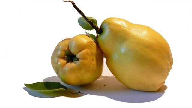 マルメロとは?どんな果物?花や実の特徴やおすすめの食べ方を紹介!