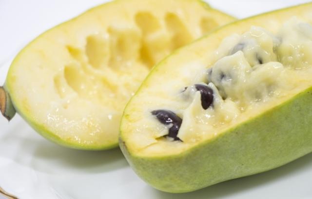 ポポー(ポーポー)とは?幻のフルーツともいわれる実の特徴や食べ方は?