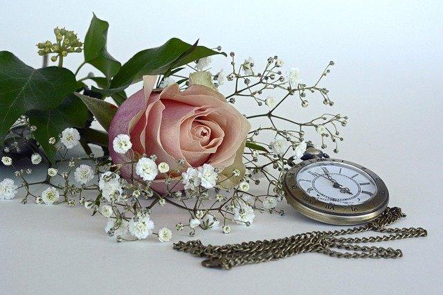 5月9日の誕生花をご紹介!特徴や花言葉・ゆかりのある有名人など!