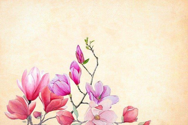 春の花木15選!3~5月に咲く花色や花言葉などの特徴を一挙ご紹介