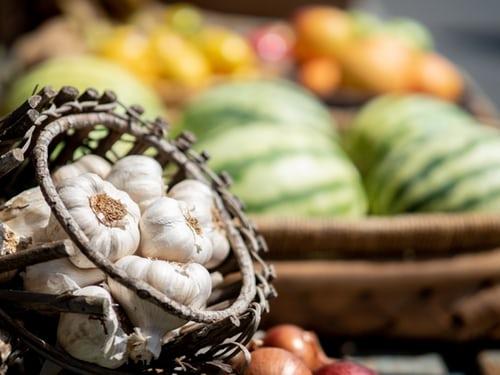 ニンニクの収穫ガイド!収穫時期の見分け方や収穫後の保存方法を解説!