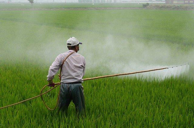 除草剤の効果的な使い方!種類・選び方から上手な散布方法まで徹底解説