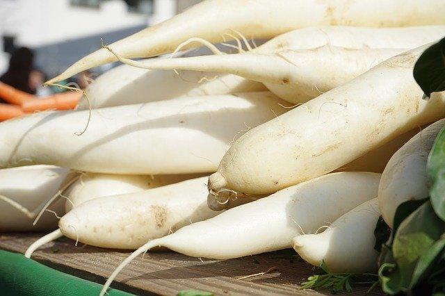大根を美味しく保存する方法は?長期保存向けのおすすめレシピも紹介!