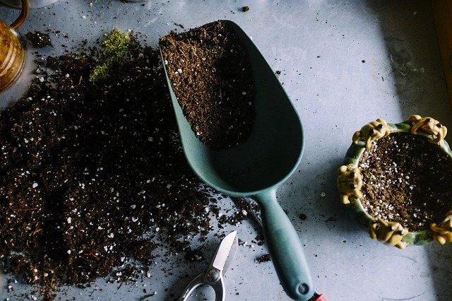 家庭菜園を始めよう!初心者にも簡単な土・畑の作り方を詳しく解説!