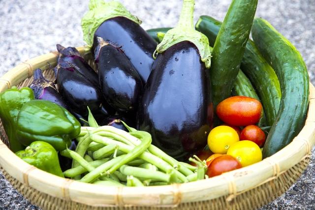 夏野菜の花言葉まとめ!意味の由来や旬な季節など各野菜の特徴も解説
