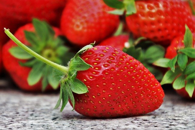 いちごの栽培マニュアル!人工受粉の仕方や上手な肥料の与え方を解説!