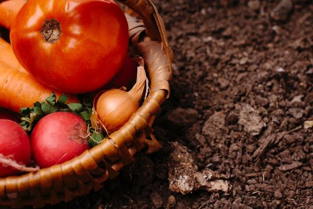 用土の捨て方!鉢植えで使い終わった土の処分・廃棄方法をご紹介!
