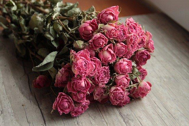 【吊るす用】ドライフラワーの作り方!花を長持ちさせるコツもご紹介