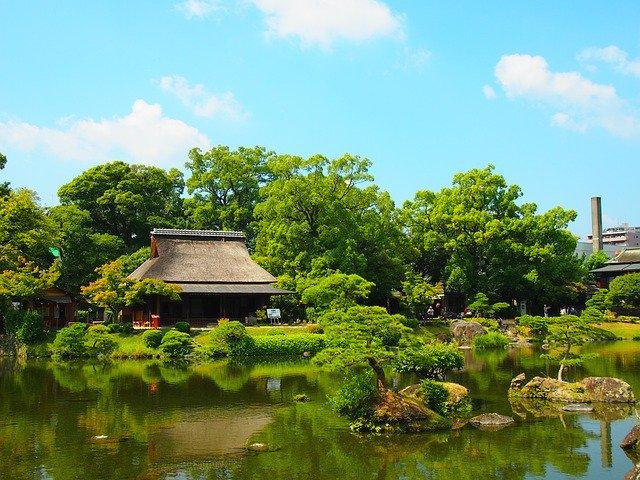 槙(マキ)とは?生垣・庭木としての管理方法や手入れの仕方を紹介!